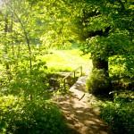 Bergische Bauern - Eine tolle Wanderrunde durch die Wupperberge