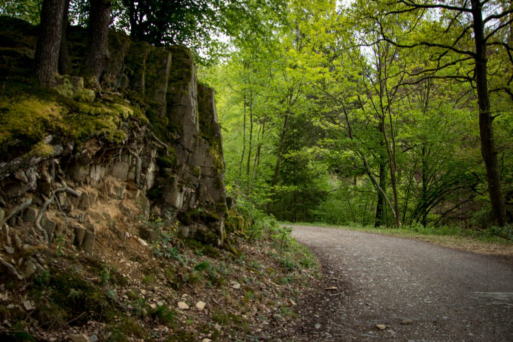 Wandern rund um die Sengbachtalsperre