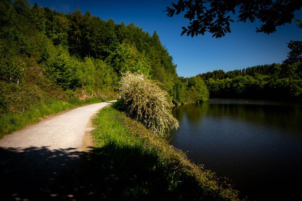Bergischer Streifzug Nr. 2 - Wasserweg Hückeswagen - Rund um die Vorsperre der Wuppertalsperre