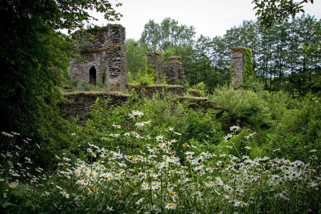 Unterwegs in Lindlar Scheel zwischen Zwergenhöhle, Ruine Burg Eibach und Ruine Burg Neuenberg - Blick auf die Ruine Eibach