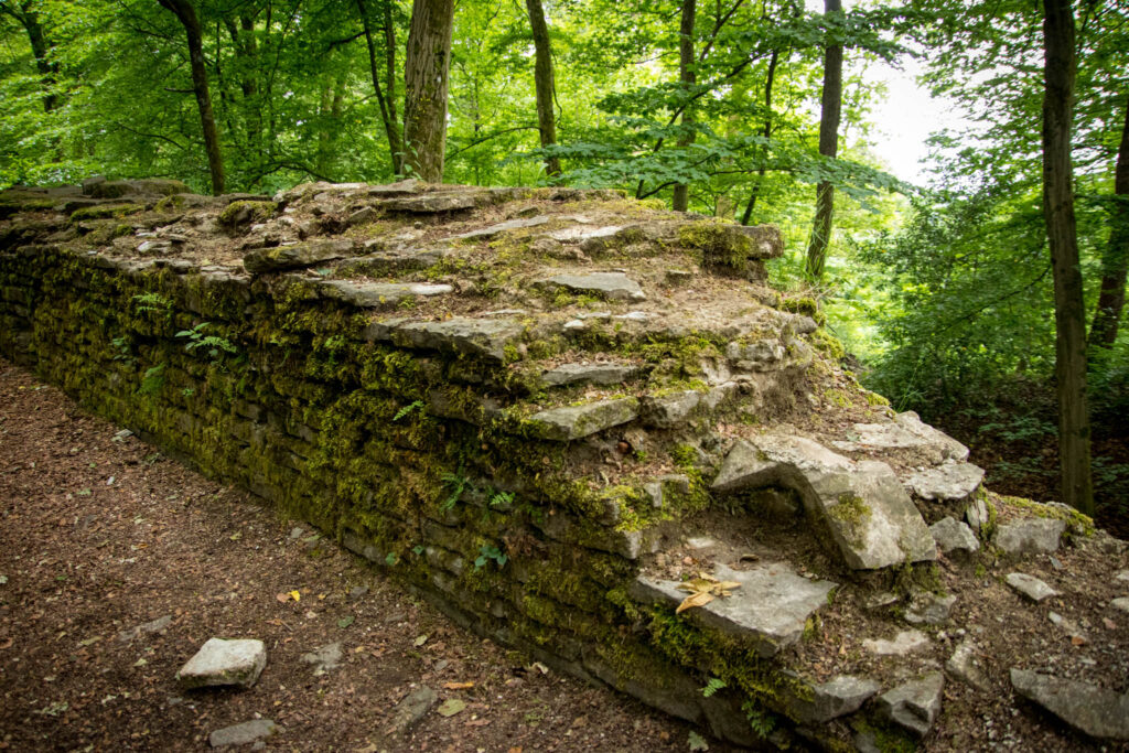 Ruine Burg Neuenberg
