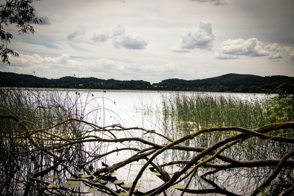 Wanderung um den Laacher See - Ufer