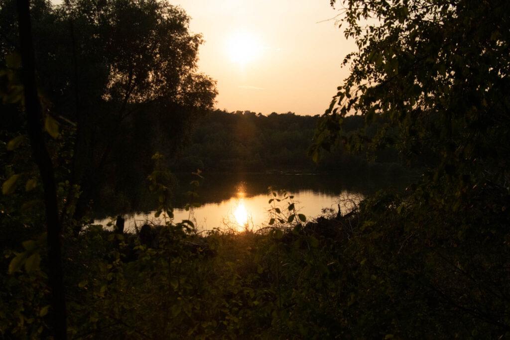 """Zwischen Köln Dünnwald und Leverkusen Schlebusch - Wandern im Naturschutzgebiet """"Am Hornpottweg"""" - Bilck über den See Richtung Sonnenuntergang"""