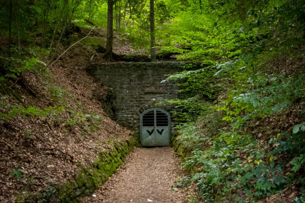 Wandern auf dem Streifzug Nr. 14 - Höhlenweg Engelskirchen - Aggertalhöhle