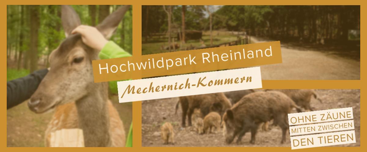 Hochwildpark Rheinland in Mechernich-Kommern