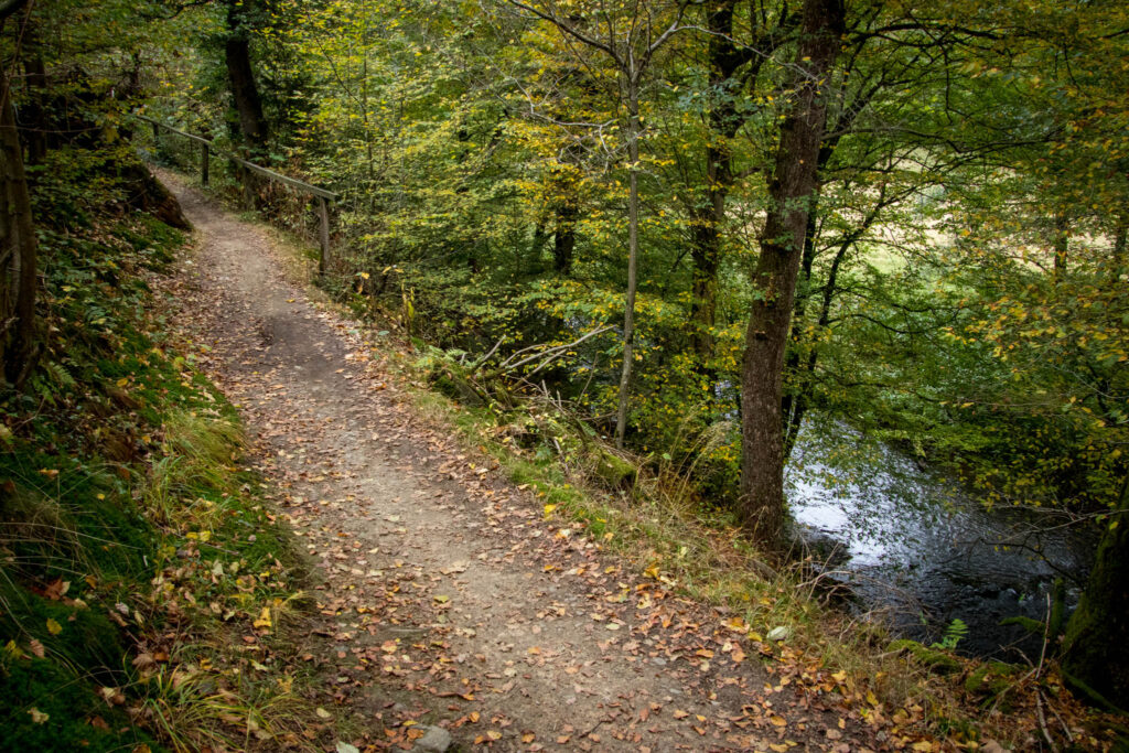 Wandern im Bergischen Land |  Hilgen - Eifgenbachtal