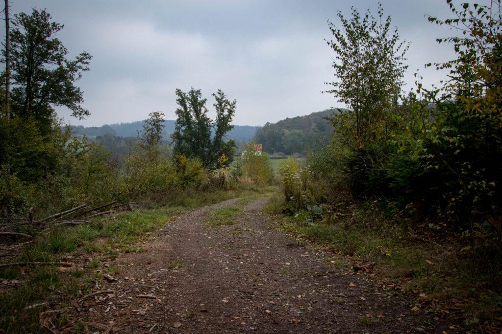 Wandern im Oberbergischen auf dem Streifzug #9 – Bergischer Fuhrmannsweg des Bergischen Wanderlandes in Marienheide
