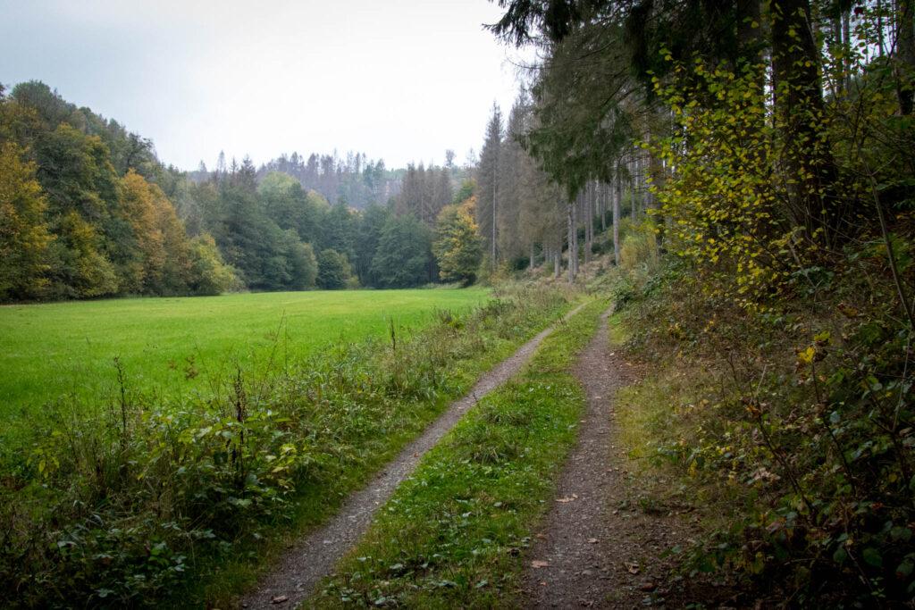 Wandern - Gummersbach - Aggertalsperre - Streifzug #10 - Energieweg