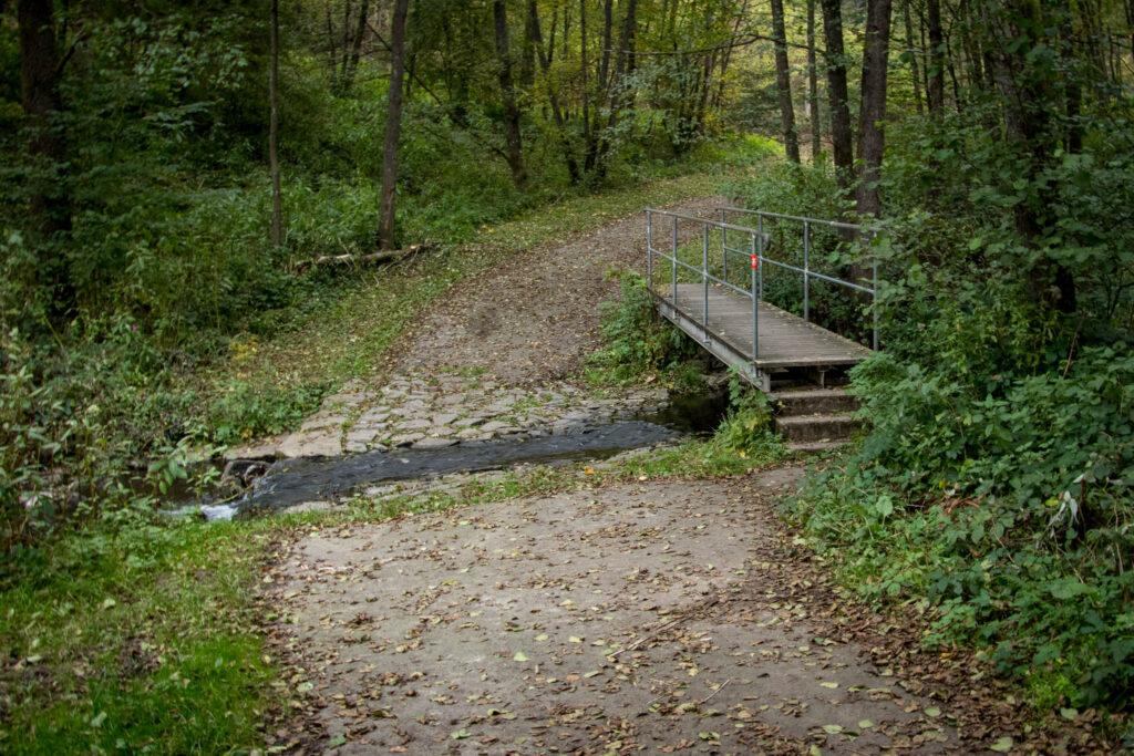 Wandern - Gummersbach - Aggertalsperre - Streifzug #10 - Energieweg - Brücke/Furt über die Rengse