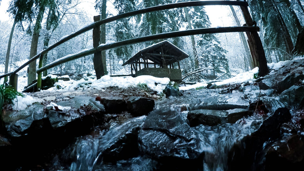 Winterwanderung Eifgenbach - Dabringhausen - Dhünntalsperre - Schöllerhof
