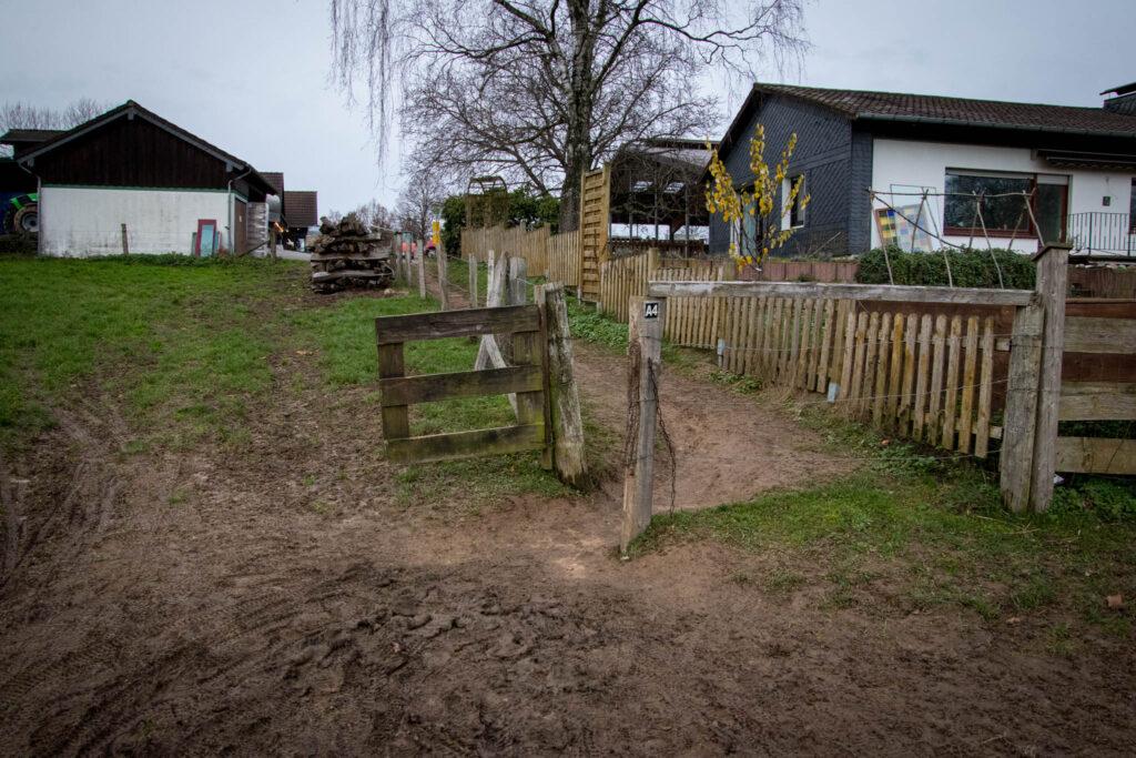 Wanderung durch das Eifgental von Burscheid Bellinhausen aus - Der Wanderweg führt über die Weide am Thomashof