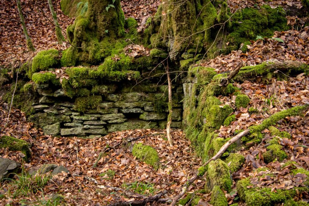 Wanderung durch das Eifgental von Burscheid Bellinhausen aus - Reste des Bökershammer am Eifgen